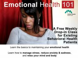 emotional health 101 image